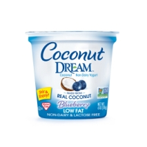 Blueberry Coconut Yogurt