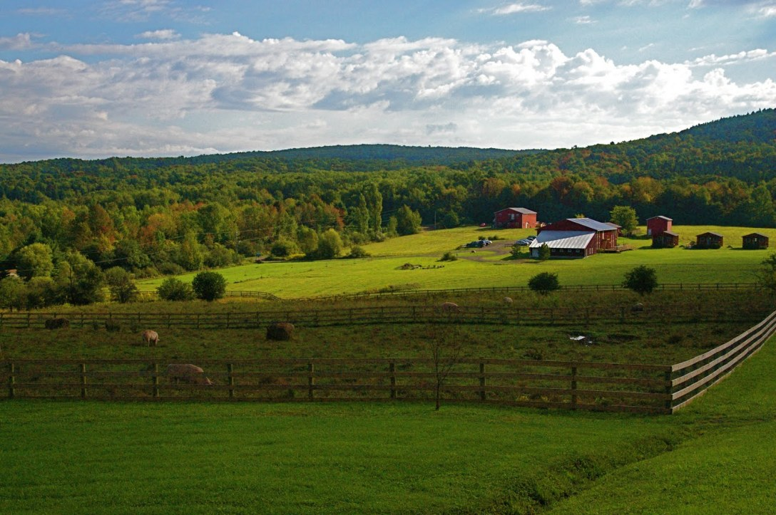 farm-sanctuary-watkins-glen-ny